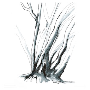 communication around trees